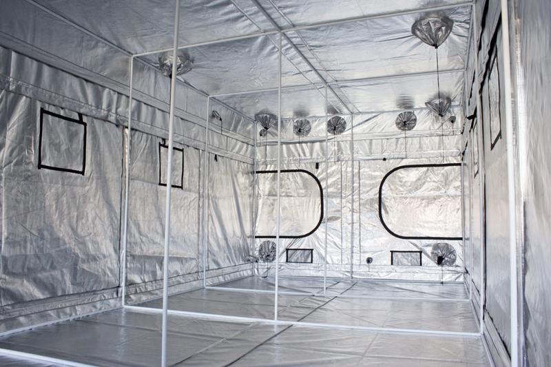 lightbox & Gorilla Grow Tent 10u0027 x 20u0027 - Goldleaf Hydro