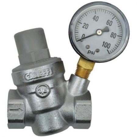 Dosatron Pressure Regulator w/ Gauge - 3/4 in (FPT x FPT)