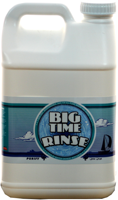 Big Time Rinse