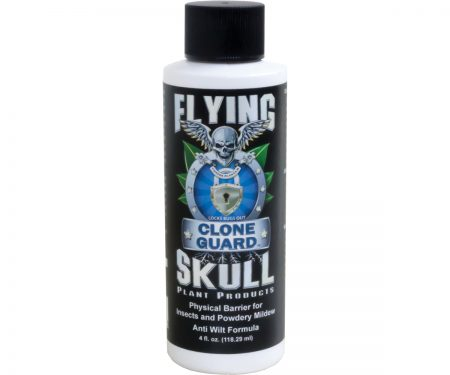 Flying Skull Clone Guard