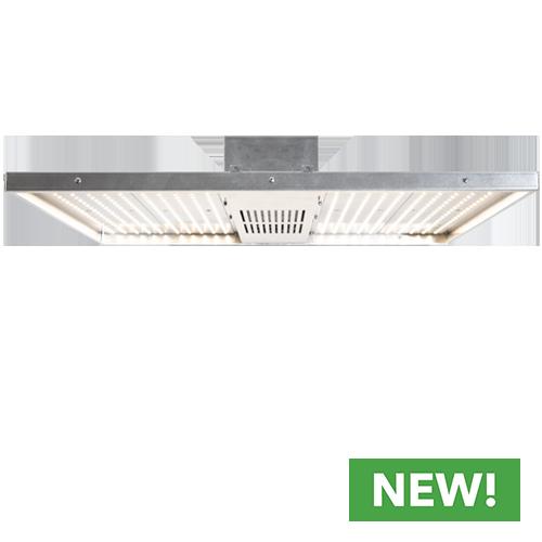 NextLight Core LED