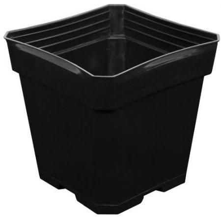 Gro Pro Black Plastic Pot 5.5 in x 5.5 in x 5.75 in