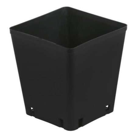 Gro Pro Black Plastic Square Pot 5 x 5 x 5.25 in